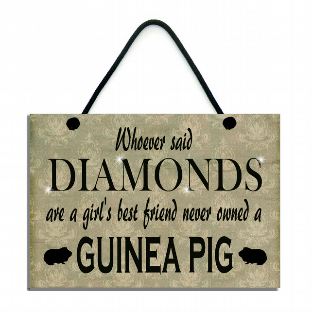 Whoever Said Diamonds Are A Girl's Best Friend Never Owned A Guinea Pig 547