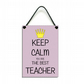 Keep Calm You Are The Best Teacher Fun Gift Handmade Home Sign 612