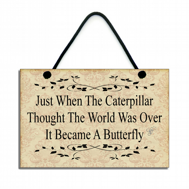 Just When The Caterpilla Thought The World Was Over Hanging Sign Plaque 132