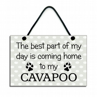 The Best Part Of My Day Is Coming Home To My Cavapoo Gift Home Sign Plaque 689