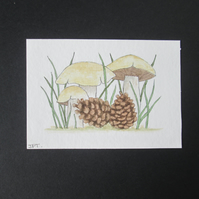 Aceo original watercolour painting, Mushrooms, pinecones, woodland
