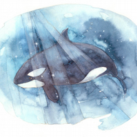Original Be Free Orca Whale framed Watercolour painting