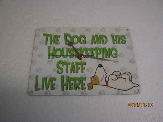 The Dog Lives Here Metal Enamel Wall Clock