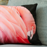 FLAMINGO - CUSHION COVERS INSPIRED BY NATURE FROM LISA COCKRELL PHOTOGRAPHY