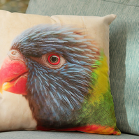 LORIKEET - CUSHION COVERS INSPIRED BY NATURE FROM LISA COCKRELL PHOTOGRAPHY