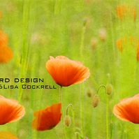 Exclusive Poppy Fields Greetings Card