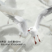 Exclusive Seagull Ballet Greetings Card