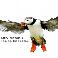 Exclusive Flying Puffin Greetings Card