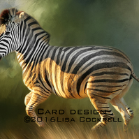 Exclusive Handmade Zebra At The Gallop Greetings Card