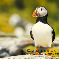 Exclusive Handmade Golden Puffin Greetings Card