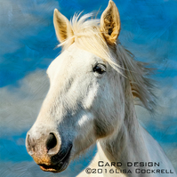 Exclusive Handmade Camargue Horse In The Clouds Greetings Card