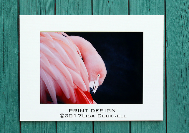FLAMINGO PRINT (A4 approx) MOUNTED FOR 40 X 30 CM FRAME