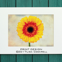 SUNFLOWER PRINT (A4 approx) MOUNTED FOR 40 X 30 CM FRAME