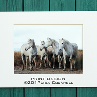 CAMARGUE HORSES PRINT (A4 approx) MOUNTED FOR 40 X 30 CM FRAME