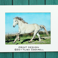 CAMARGUE STALLION PRINT (A4 approx) MOUNTED FOR 40 X 30 CM FRAME