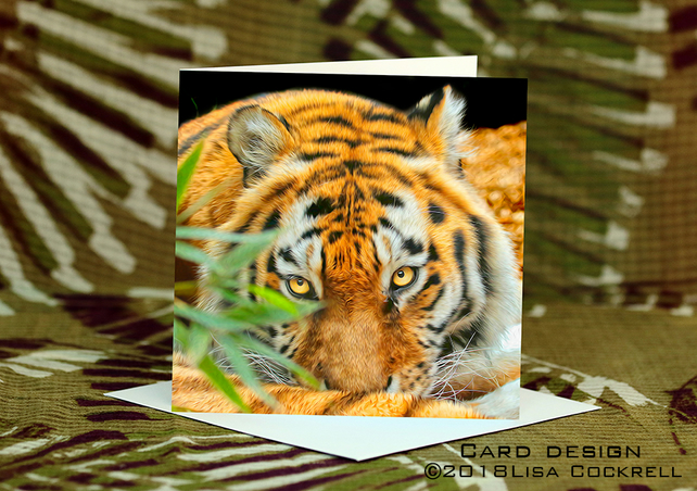 Exclusive Handmade Tiger Tiger Greetings Card on Archive Photo Paper