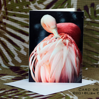 Exclusive Handmade Graceful Flamingo Greetings Card on Archive Photo Paper