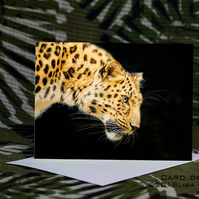 Exclusive Handmade Leopard Greetings Card on Archive Photo Paper