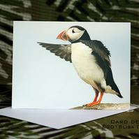 Exclusive Handmade Puffin Points Greetings Card on Archive Photo Paper