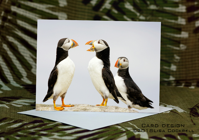 Exclusive Handmade Puffin Chat Greetings Card on Archive Photo Paper