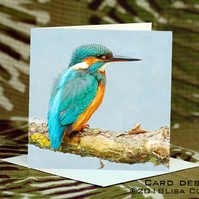 Exclusive Handmade Kingfisher Greetings Card on Archive Photo Paper