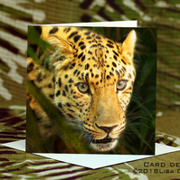 Exclusive Handmade Leopard Jungle Greetings Card on Archive Photo Paper