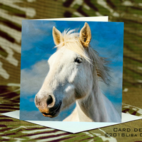 Exclusive Handmade Cloud Horse Greetings Card on Archive Photo Paper