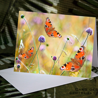 Exclusive Handmade Butterfly Meadow Greetings Card on Archive Photo Paper