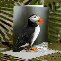 Exclusive Handmade Puffin Rock Greetings Card on Archive Photo Paper