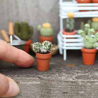 Miniature Cactus Dollhouse Crochet Potted Plant, Collectable Gift Cacti