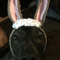 Easter Bunnie snood for dogs