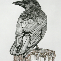 Limited Edition Giclee Print - Crow