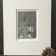 Limited Edition Etching - Hare