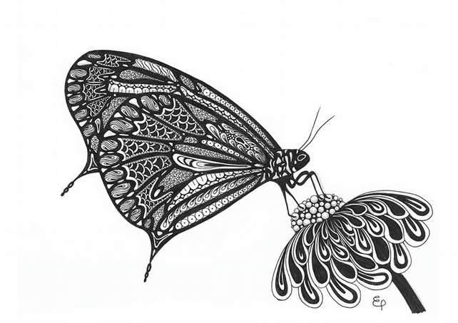 A4 Print of original Butterfly drawing