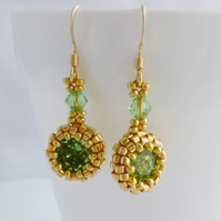 Peridot Green Crystal drop earrings with Gold Filled Earwires