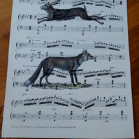 Vintage hare and fox print on vintage music sheet