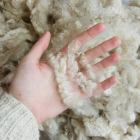 Teeswater x Shetland – Washed Fleece for Spinning, Felting (200 g)