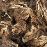 Romney x Shetland Raw Wool Fleece for Hand Spinning – Moorit Brown (800 g)