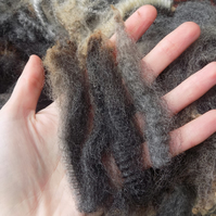 Shetland x Romney Raw Wool Fleece for Hand Spinning – Mixed Grey (500 g)
