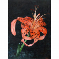 original acrylic painting, A Blooming Tiger Lilly