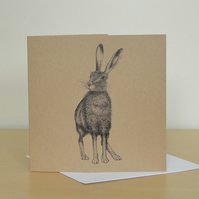 Hare illustration - greetings card