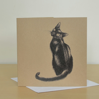 Black Cat illustration - greetings card