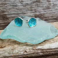 Shell Earrings (Transparent Turquoise)