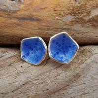 Shell Earrings (Electric Blue Transparent)