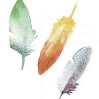 Instant Download - Feathers