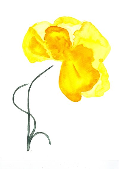 Sunshine Yellow - Print of Original Watercolour Painting