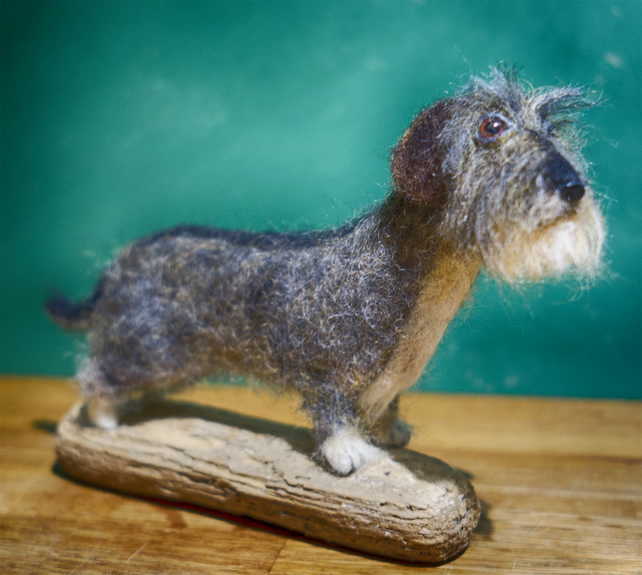 Libby - the Wire Haired Dachshund - now Sold - example only