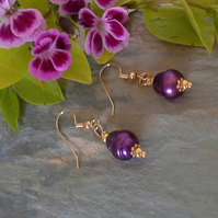 Freshwater Dyed Culture Pearl Gold Plate Earrings
