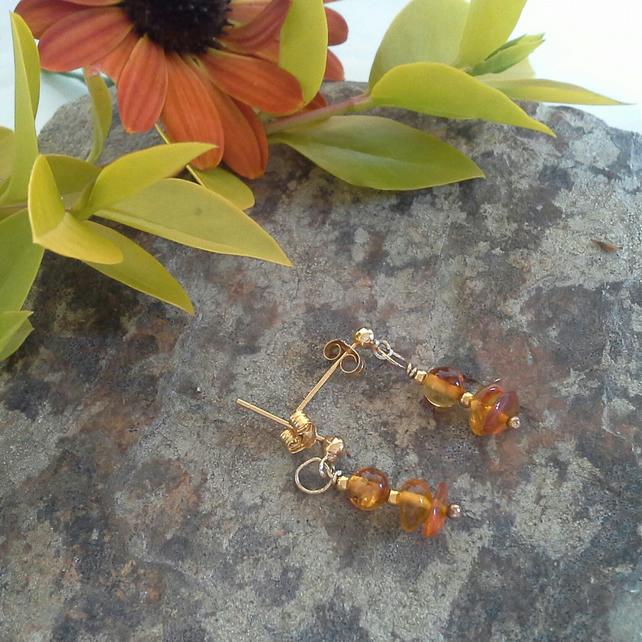 Baltic Amber Earrings Gold Vermeil (gold over 925 sterling silver)