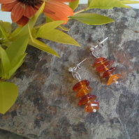 Baltic Amber Stud Style Sterling Silver Earrings